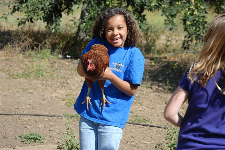 Child holding chicken and smiling
