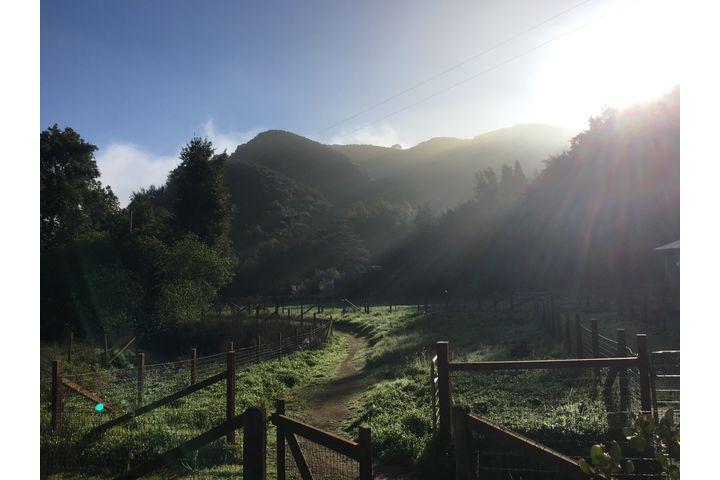 Sunny Farm Path