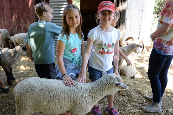 Two kids smile and pet a sheep