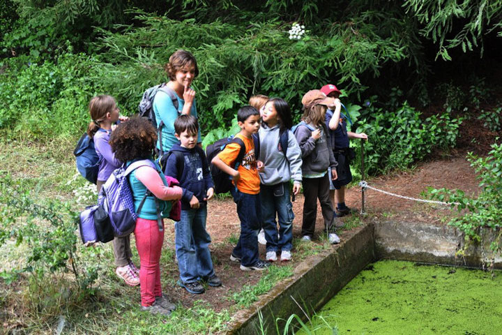 Farm and wilderness guide shows students a pond