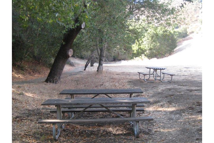 Two picnic tables under trees