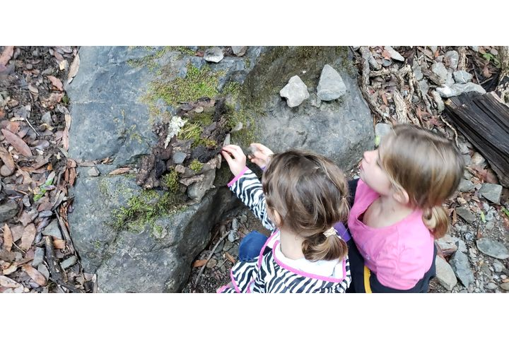 Children examining creekbed